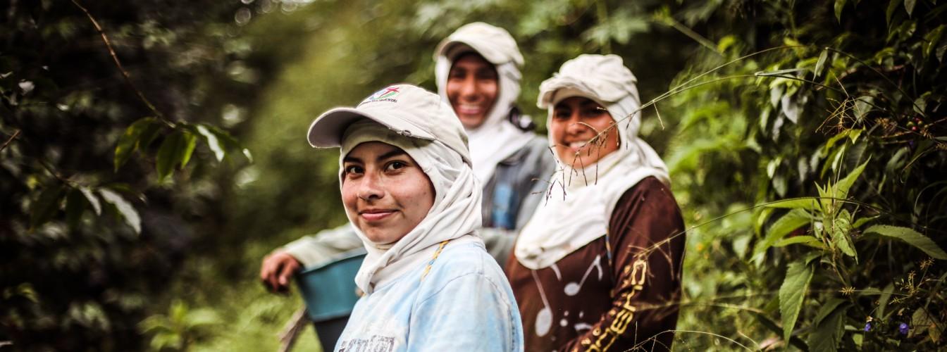 Azahar.Farm-158